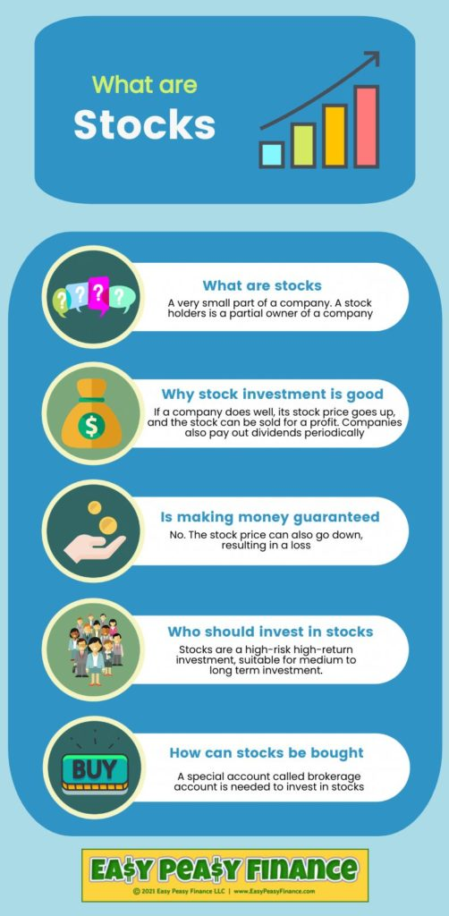 Infographic: What are Stocks